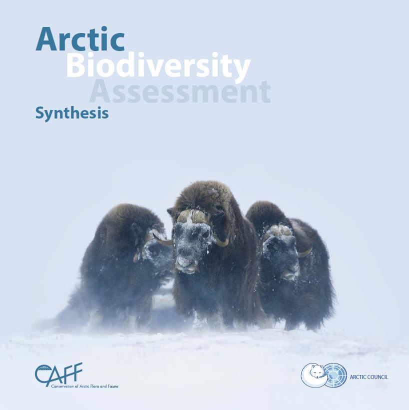 Arctic Biodiversity Assessment: Synthesis