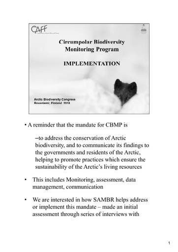 An analysis of SAMBR implementation: Rosa Meehan
