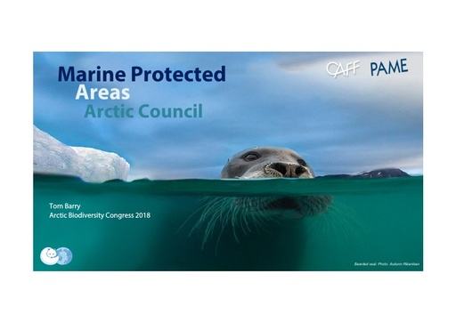 Arctic Council work to support a pan-Arctic MPA network (background on PAME & CAFF work): Tom Barry