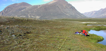 Sampling at Zackenberg, Greenland. Photo: K. S. Christoffersen
