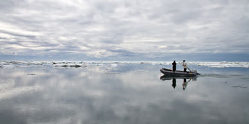 Searching for marine mammals. Photo: Josh London Alaska Fisheries Science Center, NOAA Fisheries Service