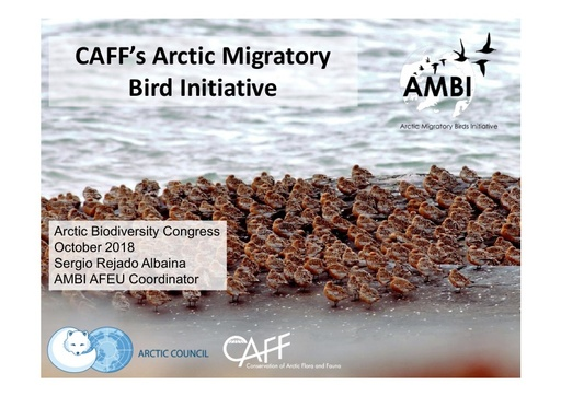 The Arctic Migratory Bird Initiative (AMBI) – international cooperation for Arctic breeding migratory birds: successes and challenges of the first 4 years: Evgeny Syroechkovskiy