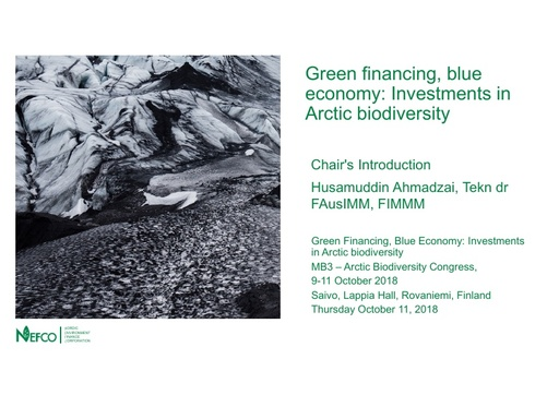 Financing green investments in the Arctic and Barents Region- NEFCO's near term cooperation: Husamuddin Ahmadzai