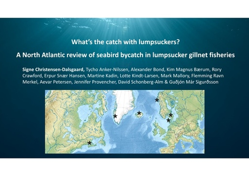 What's the catch with lumpsuckers? A review of seabird bycatch in lumpsucker gillnet fisheries in the North Atlantic: Signe Christensen-Dalsgaard