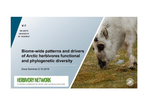Biome-wide patterns and drivers of Arctic herbivores functional and phylogenetic diversity: Eeva Soininen