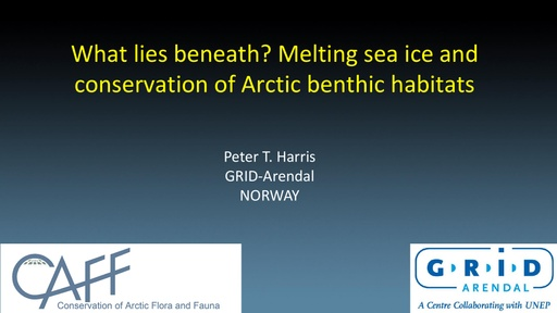 What lies beneath? Melting sea ice and conservation of Arctic benthic habitats: Peter Harris