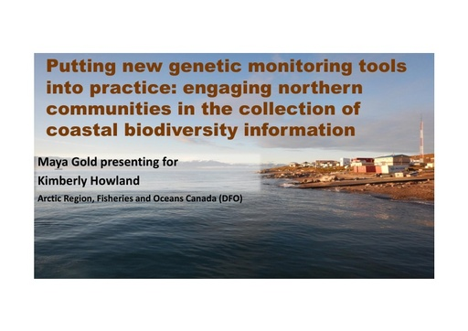 Thematic Implementation: Community-based Monitoring (Priority Actions 2.3 & 3.2): Maya Gold