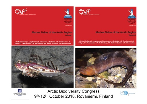 Book: Marine Fishes of the Arctic Region: Edda Johannesen