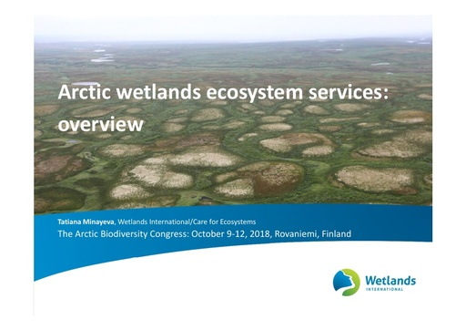 Arctic wetlands ecosystem services overview: Tatiana Minayeva