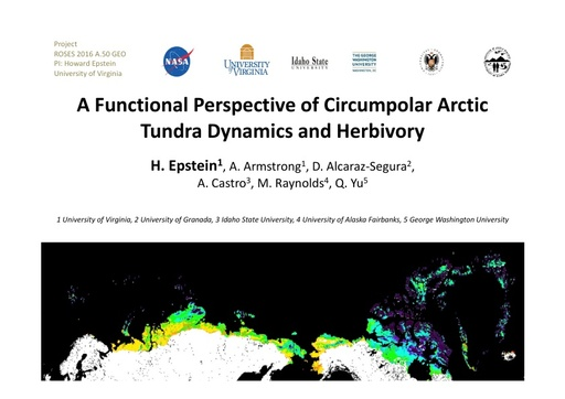 Circumpolar arctic tundra biomass and productivity dynamics in response to projected climate change and herbivory: Howard Epstein