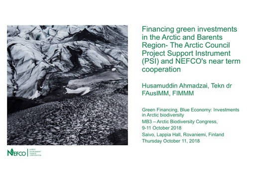 Financing green investments in the Arctic and Barents Region- The Arctic Council Project Support Instrument (PSI) and NEFCO's near term cooperation: Husamuddin Ahmadzai