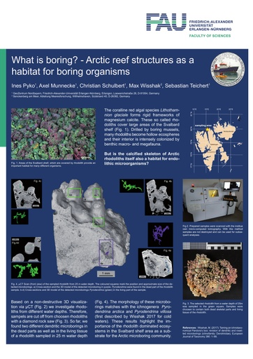 What is boring? - Arctic reef structures as a habitat for boring organisms