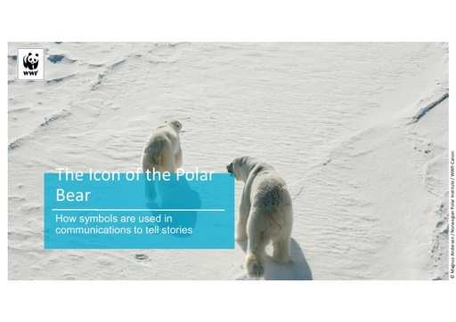 The problem of the polar bear: Does the symbol of the Arctic prevent us from fixing the Arctic?: Leanne Clare - Michael Alexander