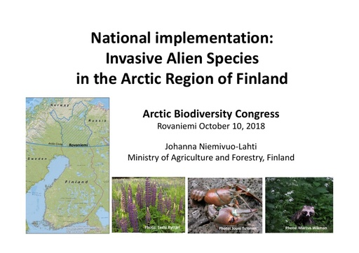 National Implementation: Finland: Johanna Niemivuo-Lahti