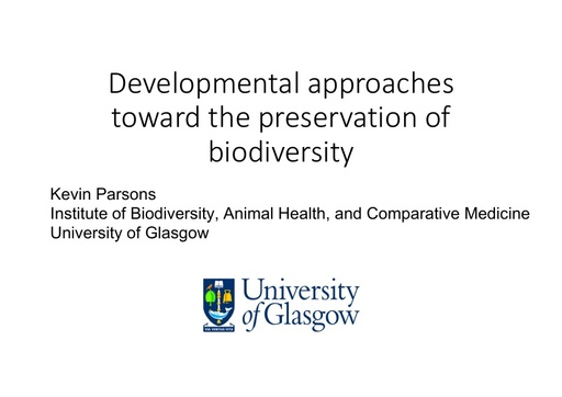 Developmental approaches toward the preservation of biodiversity through an understanding of its origins: Kevin Parsons