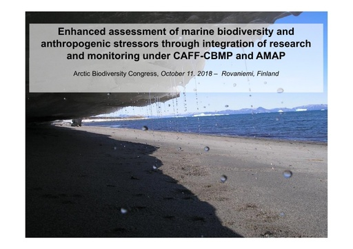 State of the Arctic Marine Biodiversity Assessment: CBMP Marine as an adaptive monitoring programme, key findings and advice for future work: Tom Christensen
