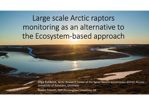 Large scale Arctic raptors monitoring as an alternative to the ecosystem based approach: Olga Kulikova and Nadia French