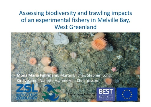 Epibenthic community structure in Melville Bay, West Greenland – assessing biodiversity and trawling impacts of an experimental fishery from underwater imagery: Mona Maria Fuhrmann