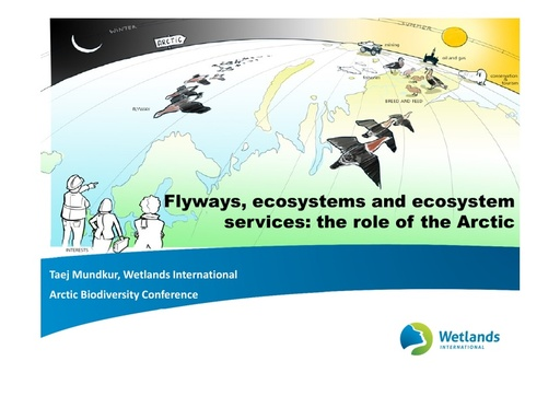 Flyways, ecosystems and ecosystem services: the role of the Arctic: Taej Mundkur