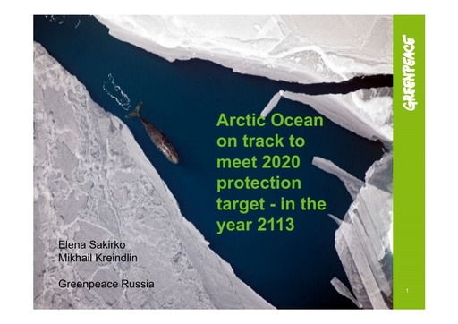 Arctic Ocean on track to meet 2020 protection target - in the year 2113: Elena Sakirko