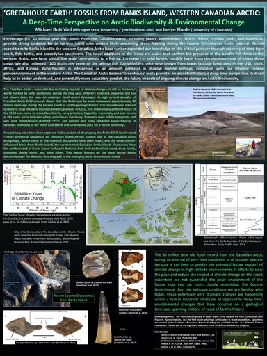 'Greenhouse Earth' fossils from Banks Island, western Canadian Arctic: a deep-time perspective on Arctic biodiversity and environmental change