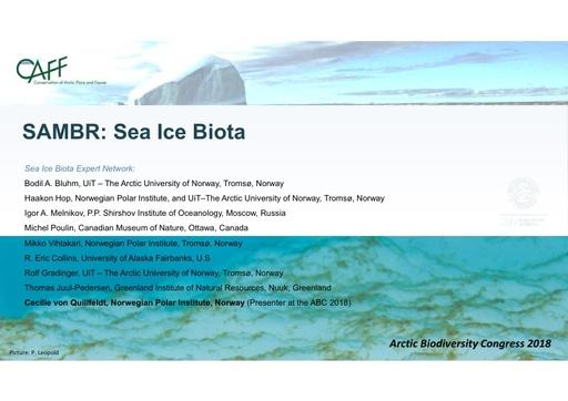 Sea ice biota key findings and information gaps: Cecilie von Quillfeldt