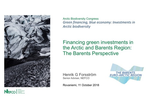 Financing green investments in the Arctic and Barents Region- The Barents Hot-spots Facility (BHSF) and NEFCO's near term cooperation: Henrik G. Forsström