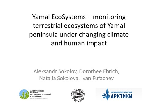 Yamal EcoSystems – monitoring terrestrial ecosystems of Yamal Peninsula under changing climate and human impact: Aleksandr Sokolov