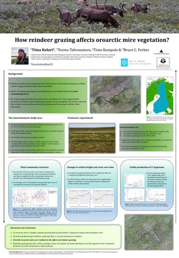 How reindeer grazing affects oroarctic fen vegetation?