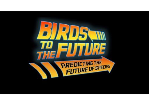 Predicting the future for endangered birds: Sirke Piirainen