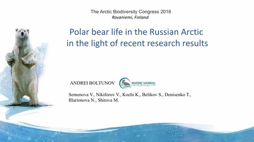 Polar bear life in the Russian Arctic in the light of recent research results: Andrei Boltunov