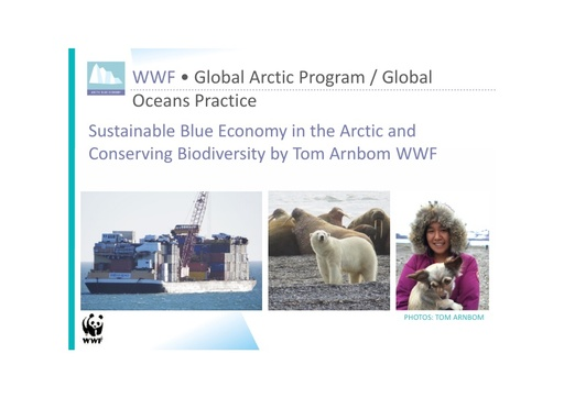 The Arctic blue economy: risks and opportunities: Tom Arnbom
