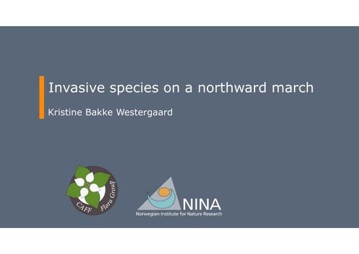 Invasive species on a northward march: Kristine Westergaard